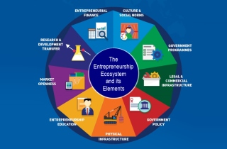 Tech Startup School | Entrepreneurship Ecosystem and Elements